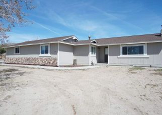 Pre Foreclosure in Reno 89506 FIR DR - Property ID: 1340752437