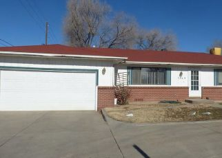 Pre Foreclosure in Clifton 81520 D 3/4 RD - Property ID: 1341375233