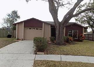 Pre Foreclosure in Brandon 33510 CINNABAR CT - Property ID: 1350466255