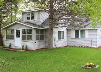Pre Foreclosure in Burt 48417 EAST RD - Property ID: 1354039699