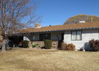 Pre Foreclosure in Grand Junction 81504 FORT UNCOMPAHGRE DR - Property ID: 1354375617