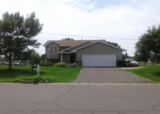 Pre Foreclosure in Big Lake 55309 EGRET AVE - Property ID: 1359357575