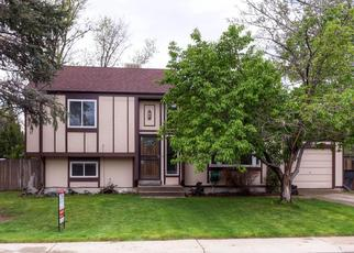 Pre Foreclosure in Denver 80233 ALBION DR - Property ID: 1361152387
