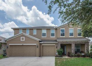 Pre Foreclosure in Dover 33527 RUSHGROVE CIR - Property ID: 1367880100