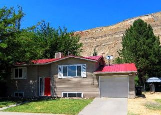 Pre Foreclosure in Palisade 81526 ROSA ST - Property ID: 1371629612