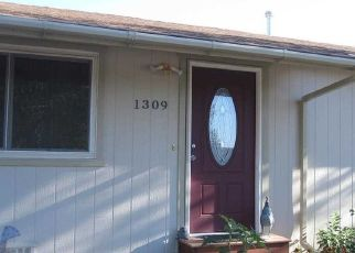 Pre Foreclosure in Gardnerville 89460 MUIR DR - Property ID: 1386313111