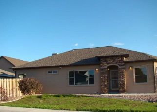 Pre Foreclosure in Grand Junction 81504 29 1/2 RD - Property ID: 1387232425