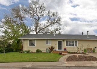 Pre Foreclosure in Longmont 80504 LIBERTY CT - Property ID: 1403876762