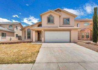 Pre Foreclosure in El Paso 79938 TIERRA ALEXIS DR - Property ID: 1410314986