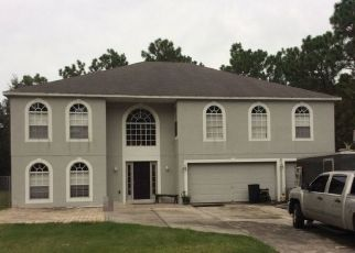 Pre Foreclosure in Dunnellon 34434 W CARY DR - Property ID: 1415228154