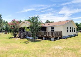 Pre Foreclosure in Eustis 32736 PARADISE WAY - Property ID: 1421241551