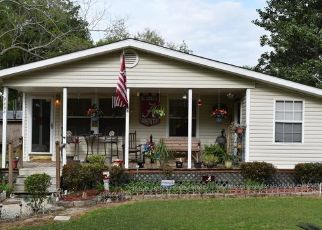 Pre Foreclosure in Irvington 36544 ARGYLE RD - Property ID: 1431738471