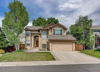 Pre Foreclosure in Castle Rock 80109 SAWGRASS TRL - Property ID: 1455859900