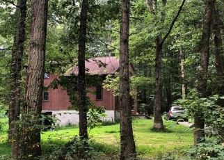 Pre Foreclosure in Catawissa 17820 HILLTOP RD - Property ID: 1457957345