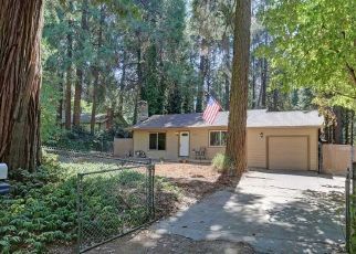 Pre Foreclosure in Pollock Pines 95726 GILMORE RD - Property ID: 1460301379
