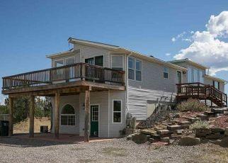 Pre Foreclosure in Durango 81303 FARRADAY RD - Property ID: 1472808607