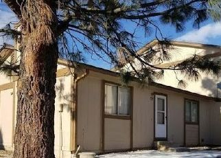 Pre Foreclosure in Denver 80229 RAINBOW DR - Property ID: 1472820879