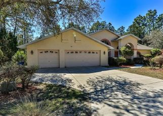 Pre Foreclosure in Homosassa 34446 DRYPETES CT W - Property ID: 1472934748