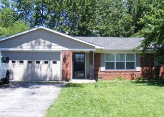 Pre Foreclosure in Noblesville 46062 E 196TH ST - Property ID: 1478923601