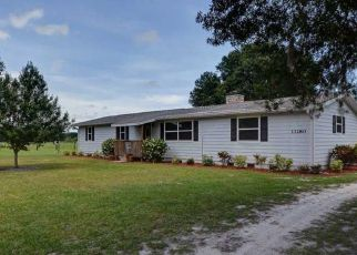 Pre Foreclosure in Fellsmere 32948 103RD ST - Property ID: 1479197332