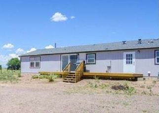 Pre Foreclosure in Colorado Springs 80928 HOLMAN RD - Property ID: 1479710643