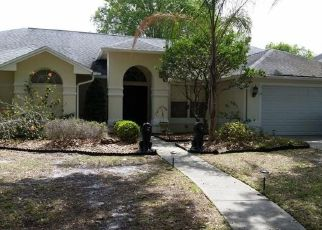 Pre Foreclosure in Tampa 33625 CRAGGY CLIFF ST - Property ID: 1490922774