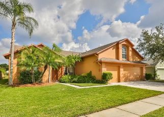 Pre Foreclosure in Tampa 33626 CORAL BERRY DR - Property ID: 1501457354