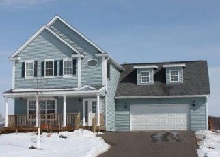 Pre Foreclosure in Bethel 55005 ERSKINE ST NE - Property ID: 1508760129