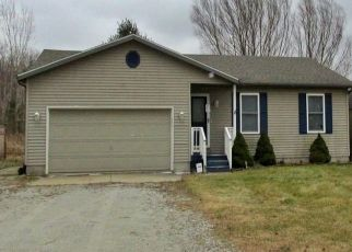 Pre Foreclosure in Smiths Creek 48074 WADHAMS RD - Property ID: 1515400257
