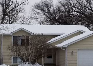 Pre Foreclosure in Anoka 55303 LAKE GEORGE BLVD - Property ID: 1522348729