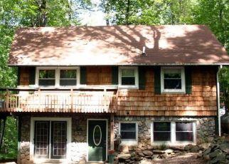 Pre Foreclosure in Linden 22642 CHIPMUNK TRAIL LN - Property ID: 1527294316