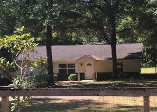 Pre Foreclosure in Dunnellon 34432 SW 57TH PL - Property ID: 1528583724