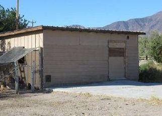 Pre Foreclosure in Amargosa Valley 89020 N TAMARACK RD - Property ID: 1531230389