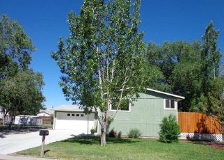 Pre Foreclosure in Grand Junction 81504 MEADOW RD - Property ID: 1532179482