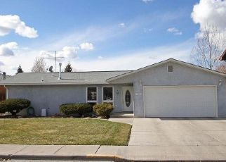 Pre Foreclosure in Alamosa 81101 DUKE DR - Property ID: 1535055664