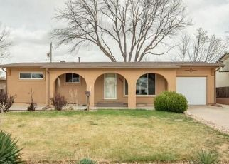Pre Foreclosure in Pueblo 81005 BROOKFIELD LN - Property ID: 1542929560