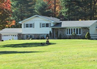 Pre Foreclosure in Asbury 08802 MINE RD - Property ID: 1548288609