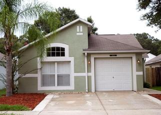 Pre Foreclosure in Wesley Chapel 33545 DOUBLE DR - Property ID: 1549046298