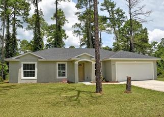 Pre Foreclosure in Deland 32724 E MAGNOLIA RD - Property ID: 1549055951