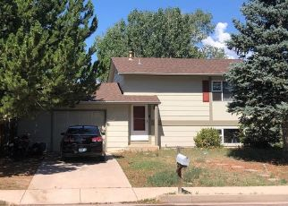 Pre Foreclosure in Colorado Springs 80911 BROOK FOREST DR - Property ID: 1549228949