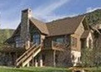 Pre Foreclosure in Carbondale 81623 LARKSPUR DR - Property ID: 1549684434