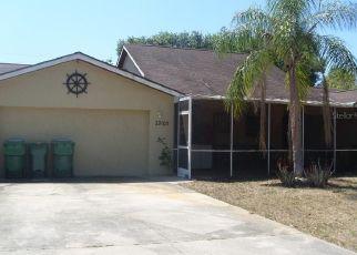 Pre Foreclosure in Punta Gorda 33983 COUGAR PL - Property ID: 1549891592