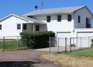 Pre Foreclosure in Brighton 80603 LANEWOOD ST - Property ID: 1551696932