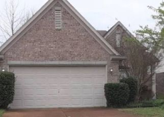 Pre Foreclosure in Arlington 38002 MISTY VALLEY DR - Property ID: 1553049834