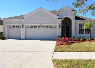 Pre Foreclosure in Riverview 33579 CALLAWAY POND DR - Property ID: 1558722463