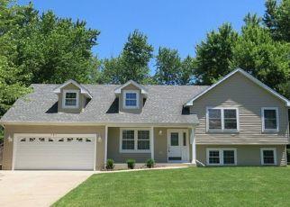 Pre Foreclosure in Carpentersville 60110 SKYLINE DR - Property ID: 1570468935