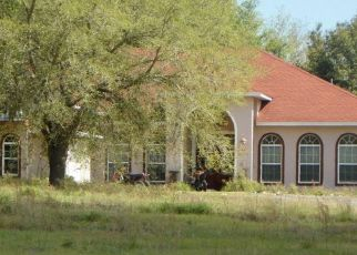 Pre Foreclosure in Howey In The Hills 34737 TURKEY LAKE RD - Property ID: 1571852931