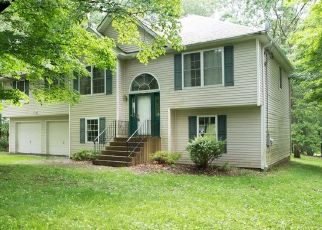 Pre Foreclosure in Poughquag 12570 MENNELLA RD - Property ID: 1588543679