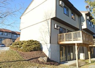 Pre Foreclosure in Hopewell Junction 12533 CHELSEA CV N - Property ID: 1588682960