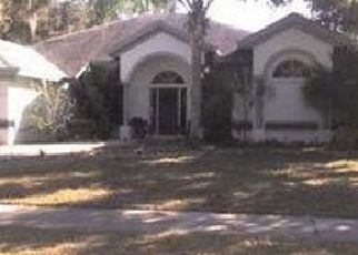 Pre Foreclosure in Riverview 33569 NIGHTENGALE DR - Property ID: 1591735180